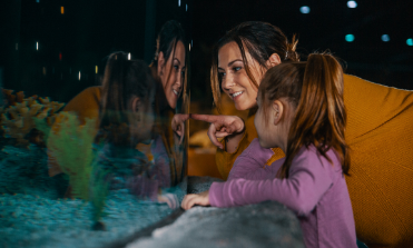 mother and daughter looking into Caribbean reef exhibit